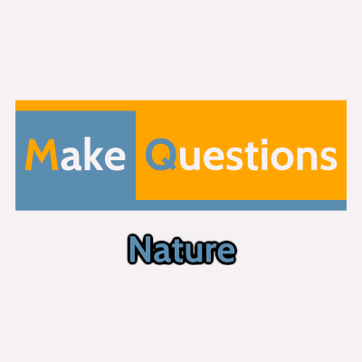 Nature - MakeQuestions category image